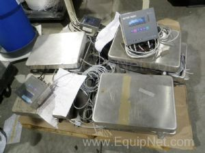 Multi Lot of Mettler Toledo Panther-GB Scales