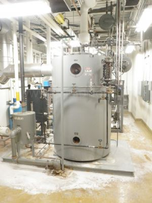 Fulton Model 1CS-50 Fuel Fired Steam Boiler