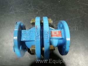Flowserve ARV20002020 Two Inch Ball Check Valve