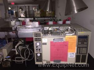 Hewlett Packard 5890 Gas Chromatograph with FID and TCD Detector