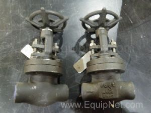 Lot of 2 Flowserve SW12141 Globe Valves