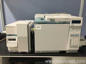 Hewlett Packard HP 6890 Plus Gas Chromatograph with HP 5973 Mass Selective Detector