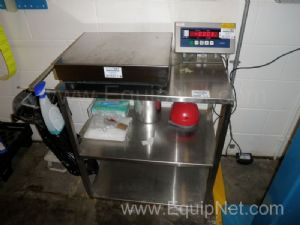 Lucid Stainless Steel Platform Scales with seperate display unit 0 to 50kg