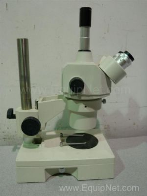 Fisher Scientific Stereomaster Stereo Microscope
