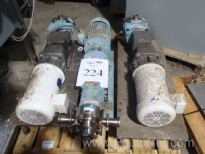 Lot of (3)Misc. Waukesha And Various Pumps on Pallet