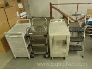 Lot of 3 Carts and 1 Stepladder
