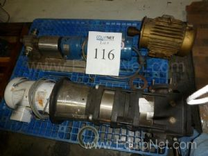 Lot of 2 Stainless Steel Pumps