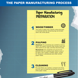 The step-by-step basics of how paper is created, including the preparation and the processing.