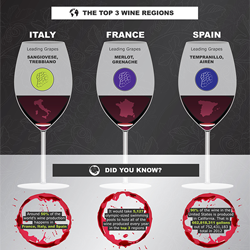 An inside look at the global wine industry broken down by consumers and manufacturers.